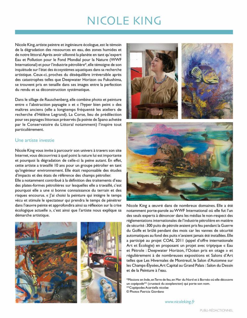 Decomag 2013 Page 1