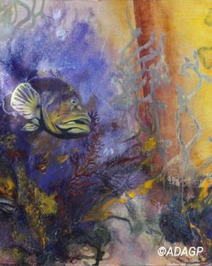 L'oeil du récif de corail