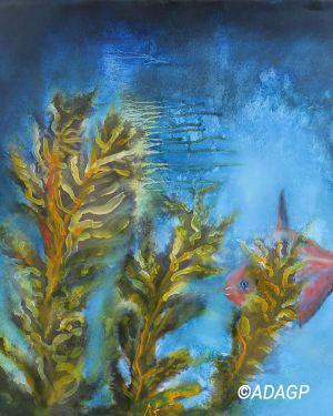 Caché dans les algues 1