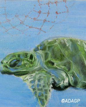 Jeune tortue marine nageant