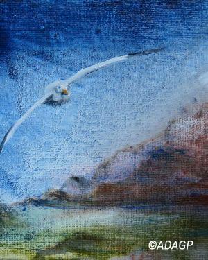 Petit paysage à l'Albatros