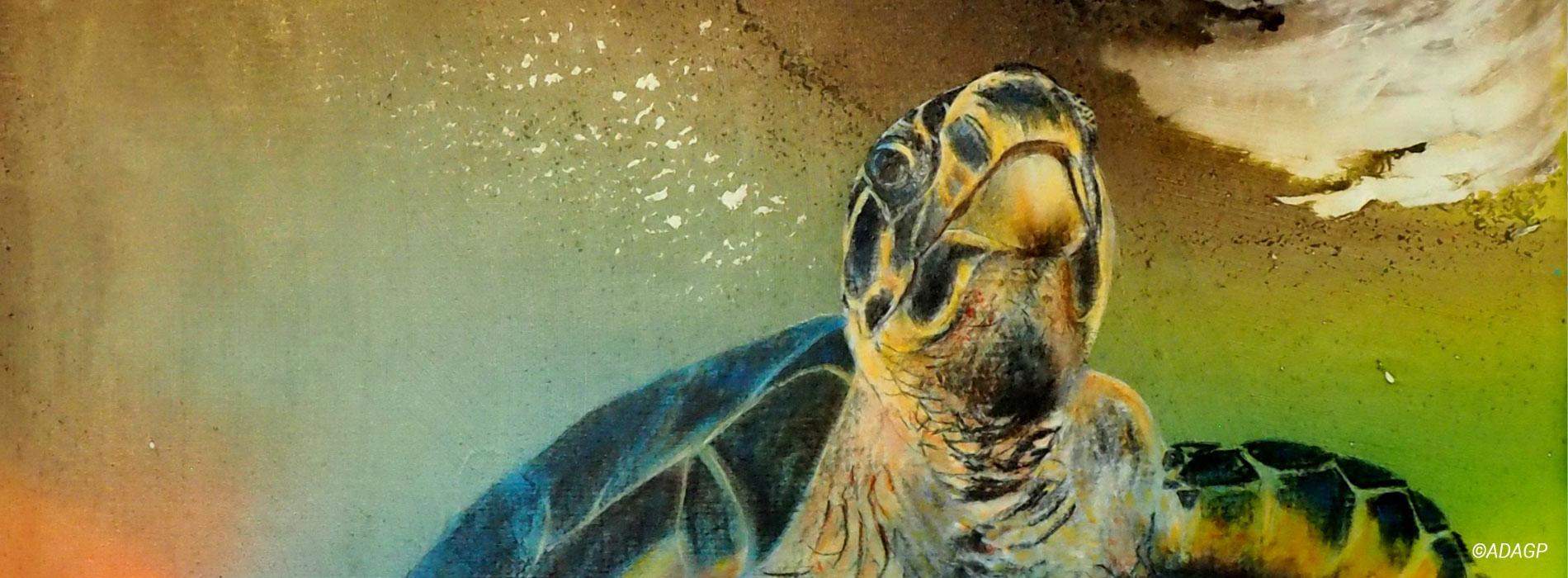 Biodiversité - Illustration thème large